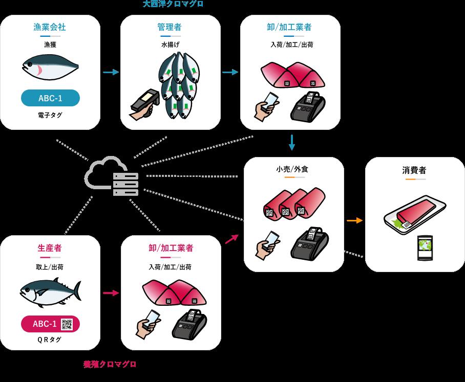 トレーサビリティ システムのフロー図
